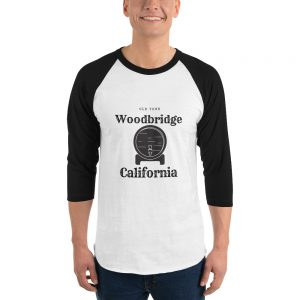 Woodbridge Pride 3/4 sleeve raglan shirt